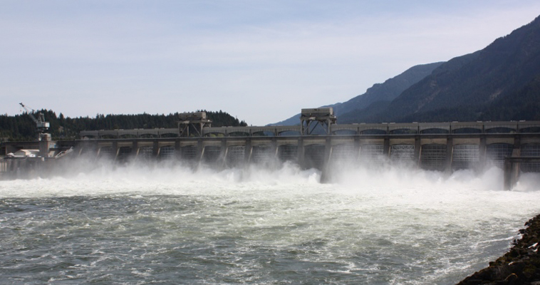 Opinion - Lower Snake River Dams help keep the lights on